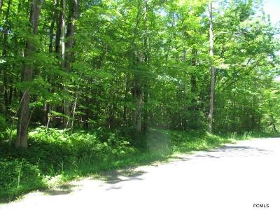Gloversville Residential Lots & Land For Sale: Willie Rd