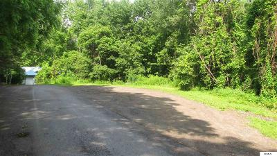 Gloversville Residential Lots & Land For Sale: Wesskum Woods Rd