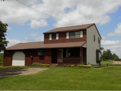 Broome County, Cayuga County, Chenango County, Cortland County, Delaware County, Tioga County, Tompkins County Single Family Home For Sale: 353 Owen Hill Road