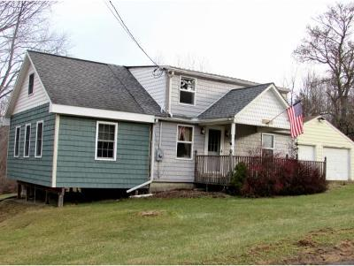 Vestal Single Family Home For Sale: 228 Rockwell Rd