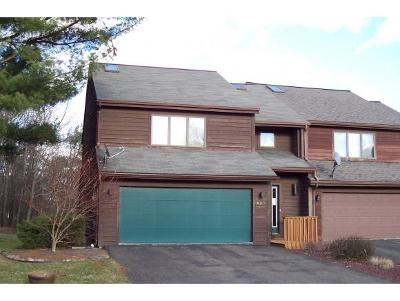 Vestal NY Single Family Home For Sale: $145,000