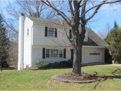 Apalachin Single Family Home For Sale: 64 Frederick Drive