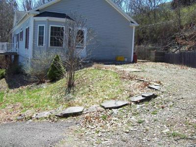 Endicott NY Single Family Home For Sale: $119,000