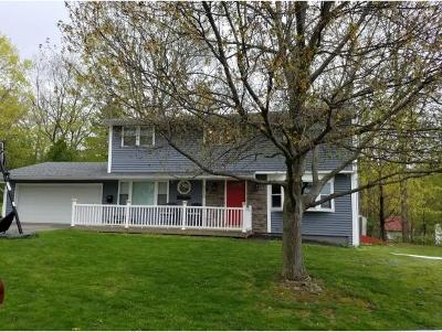 Endwell Single Family Home For Sale: 3710 Alpine Dr