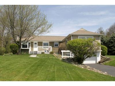 Vestal Single Family Home For Sale: 29 Grippen Hill Road