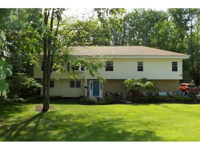 Broome County, Chenango County, Cortland County, Tioga County, Tompkins County Single Family Home For Sale: 963 Southern Pines Drive