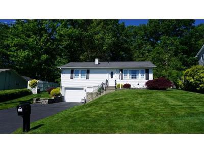 Broome County, Chenango County, Cortland County, Tioga County, Tompkins County Single Family Home For Sale: 1133 Elton Drive