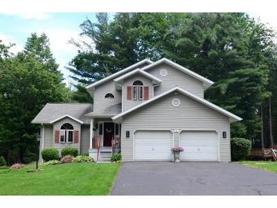 Apalachin Single Family Home For Sale: 39 Maryvale Drive
