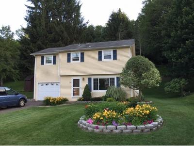 Apalachin Single Family Home For Sale: 39 Holmes Avenue