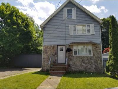 Johnson City Single Family Home For Sale: 12 Brewster Street