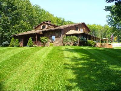 Binghamton Single Family Home For Sale: 1250 Hawleyton Road