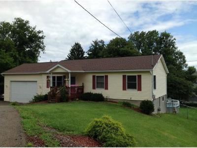 Broome County, Chenango County, Cortland County, Tioga County, Tompkins County Single Family Home For Sale: 12 Cornell