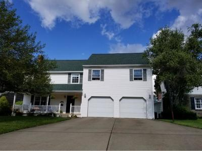 Binghamton Single Family Home For Sale: 1191 Chenango Street