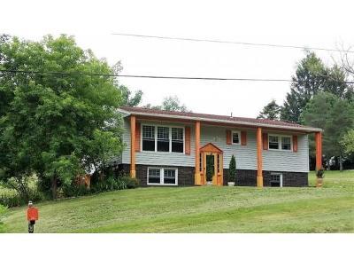 Port Crane NY Single Family Home For Sale: $170,000