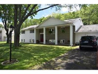 Endwell Single Family Home For Sale: 917 Forest Road