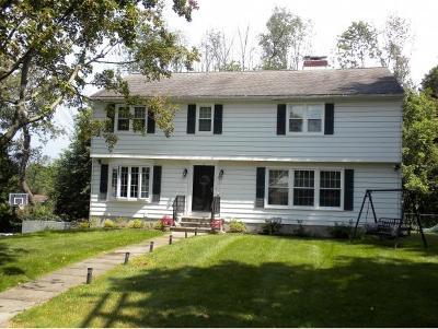 Binghamton Single Family Home For Sale: 11 Brookside Rd