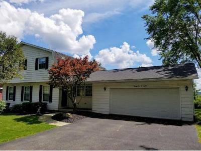 Broome County, Cayuga County, Chenango County, Cortland County, Delaware County, Tioga County, Tompkins County Single Family Home For Sale: 2922 Holly Lane
