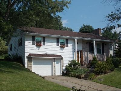 Apalachin Single Family Home For Sale: 8 Crescent Drive