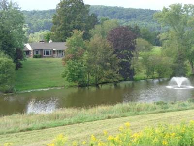 Chenango Forks NY Single Family Home For Sale: $349,900