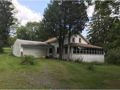 Endwell Single Family Home For Sale: 1165 Robinson Hill Rd
