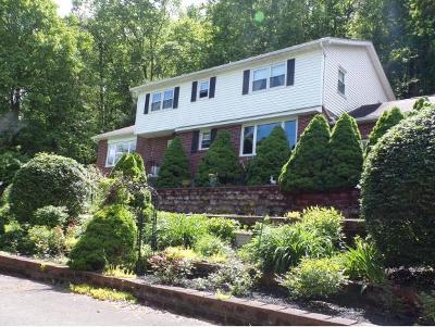 Single Family Home For Sale: 1193 River Rd