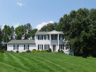 Single Family Home For Sale: 505 Nowlan