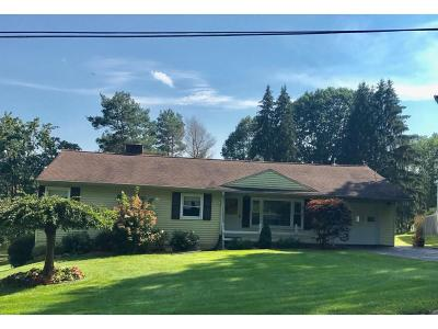 Apalachin Single Family Home For Sale: 301 Barton Road