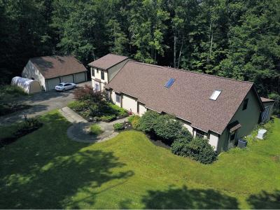Apalachin Single Family Home For Sale: 1381 Holmes Rd