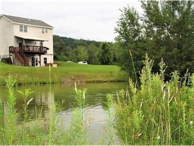 Broome County, Chenango County, Cortland County, Tioga County, Tompkins County Single Family Home For Sale: 93 Cresson Hill