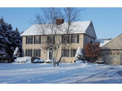 Apalachin Single Family Home For Sale: 1977 Marshland Road