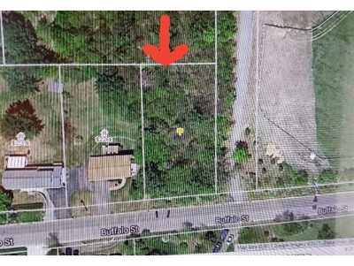 Residential Lots & Land For Sale: 1121 Buffalo