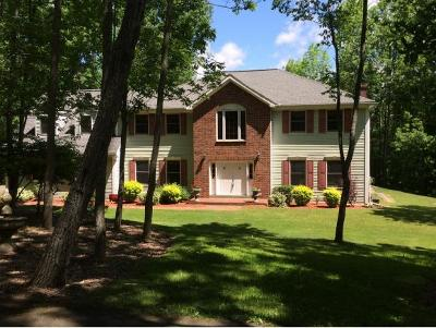 Vestal Single Family Home For Sale: 303 Crumm Road
