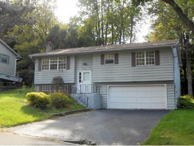 Vestal Single Family Home For Sale: 208 Warren Street