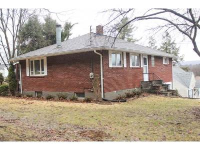 Vestal Single Family Home For Sale: 332 Leroy Avenue