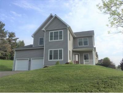 Vestal Single Family Home For Sale: 4099 Fuller Hollow