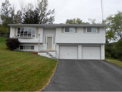 Vestal Single Family Home For Sale: 1404 Carnegie Drive