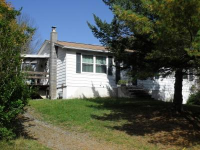 Vestal Single Family Home For Sale: 620 Echo Road