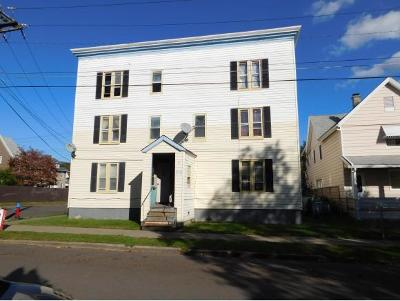 Binghamton Multi Family Home For Sale: 5 Grace Street