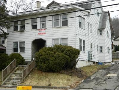 Binghamton Multi Family Home For Sale: 202 Conklin Avenue Package