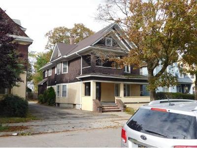 Binghamton Multi Family Home For Sale: 11 Cedar