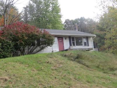 Binghamton Single Family Home For Sale: 148 Morgan Rd.