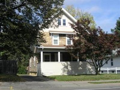 Binghamton Single Family Home For Sale: 345 Conklin Avenue