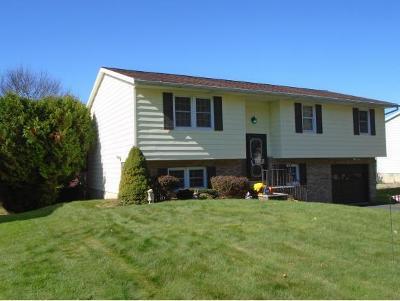 Broome County, Chenango County, Cortland County, Tioga County, Tompkins County Single Family Home For Sale: 1113 Tamara Lane