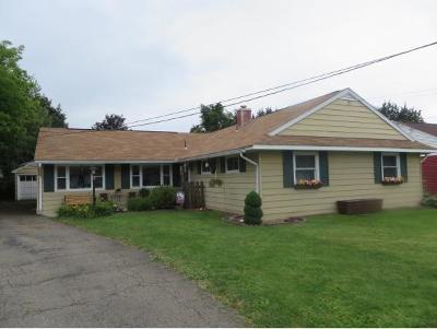 Vestal Multi Family Home For Sale: 308 Loren Ave.