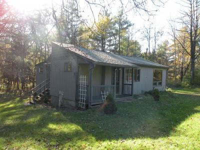 Binghamton Single Family Home For Sale: 560 Powers Road