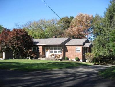 Vestal NY Single Family Home For Sale: $136,900