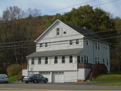 Binghamton Multi Family Home For Sale: 1645 Nys Rte 12