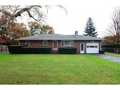 Conklin NY Single Family Home For Sale: $152,000