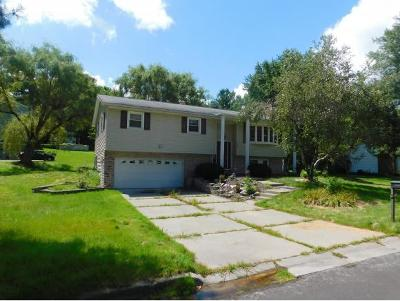 Apalachin Single Family Home For Sale: 30 Highland Drive