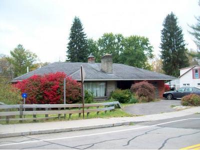 Harpursville NY Single Family Home For Sale: $105,000